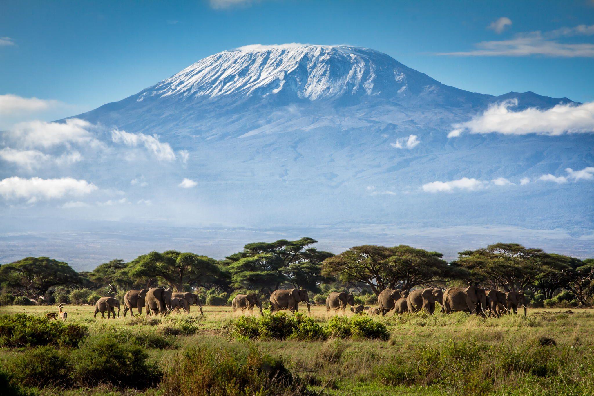 kenya - Afrikas Största Länder